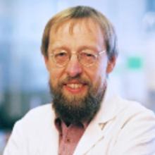 Kurt Hermann Straif
