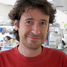 Luis Izquierdo Lazaro
